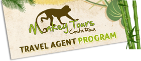 Travel Agent Program