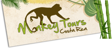 Logo Costa Rica Monkey Tours