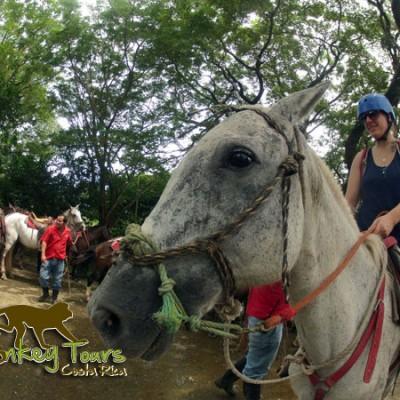 Find happy horses in Costa Rica