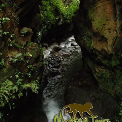 amazing river guachipelin