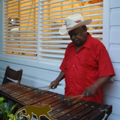 playing marimba costa rica