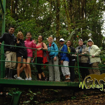 Tour group experience with Monkey Tours in the cloudforest