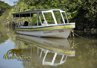Costa Rica Palo Verde River Tour with Monkey Tours