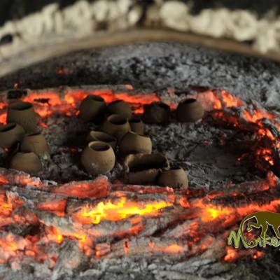 guanacaste oven culture