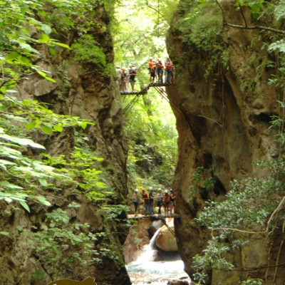 Tours Companies Costa Rica