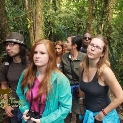 Friendship tours around Costa Rica