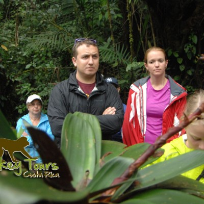 Learning more about the wildlife and nature around Costa Rica