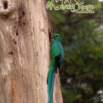 Nature Costa Rica