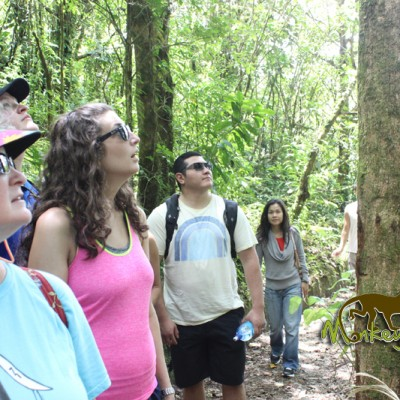Education about the wildlife and nature in Costa Rica