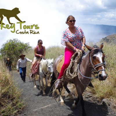 Multiple horses, horseback riding tour 2