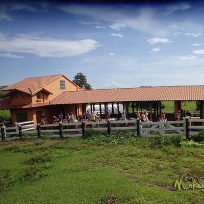 Guided tour group horseback riding in Costa Rica