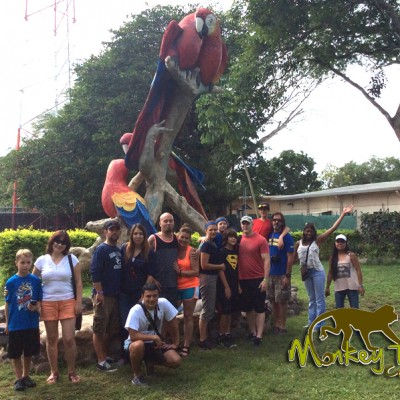 guided tour Macaws bird watching Costa Rica Tour 116