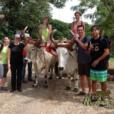 Guided Adventure with Oxcarts in Hacienda Guachipelin Guanacaste Costa Rica Tour 125