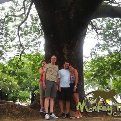 Guanacaste Tree Costa Rica Escorted Trip 126