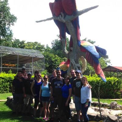 guided tour macaw birds statue Guanacaste Costa Rica Tour 120
