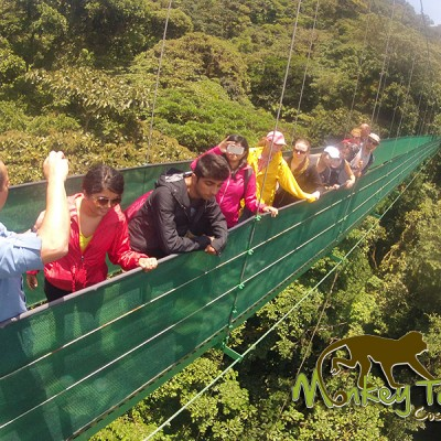Sky Walk hanging bridges Monteverde guided adventure Costa Rica Tour 115