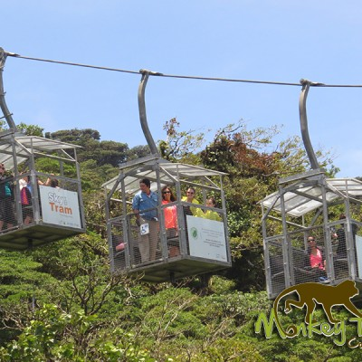 Sky Tram Monteverde guided group Costa Rica Tour 115