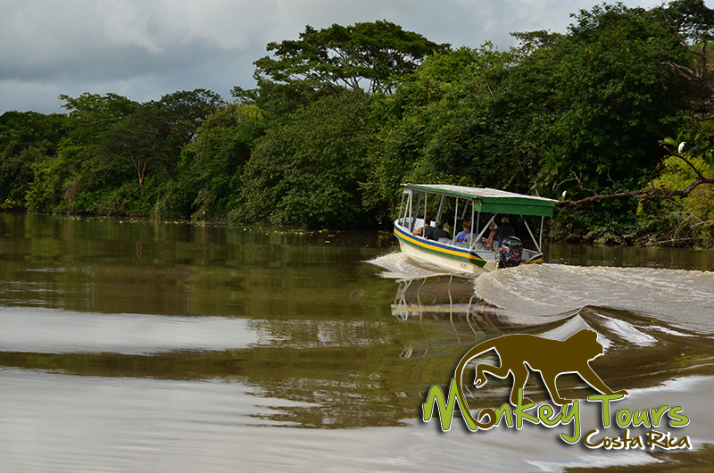 Palo Verde Boat Tour Costa Rica Guided Getaway 134