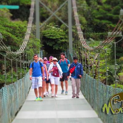 Sky Walk Monteverde Guided Tour Costa Rica Getaway 136