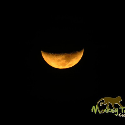 Beautiful Yellow Moon Night Sky Costa Rica Getaway Adventure 136