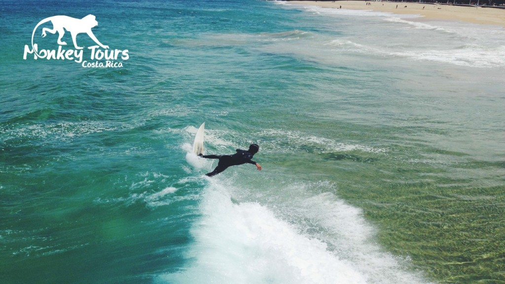 Best surf trip costa rica options