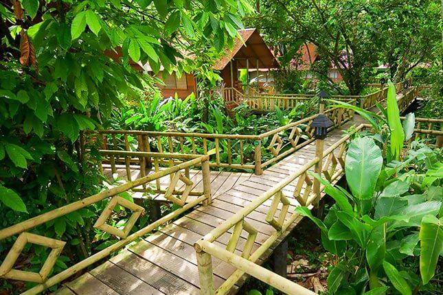 Costa Rica Monkey Tours Itinerary